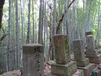 Dans un vieux cimetière de Shikoku (Japon 2010)